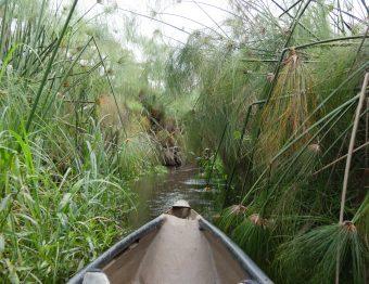 Auf dem Weg ins Okavango Delta