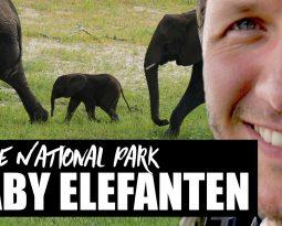 Chobe Nationalpark und Viktoriafälle 2017 [VLOG #6]